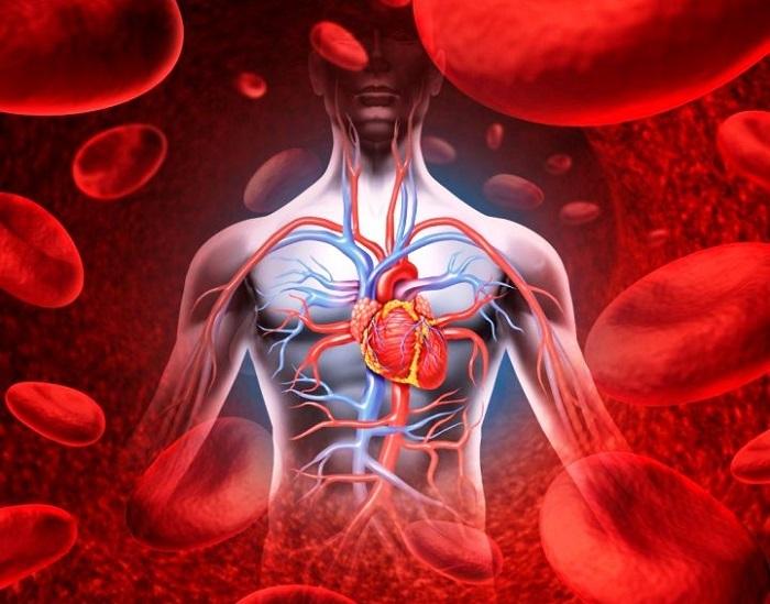 A szívbillentyűk leggyakoribb szerzett betegségei