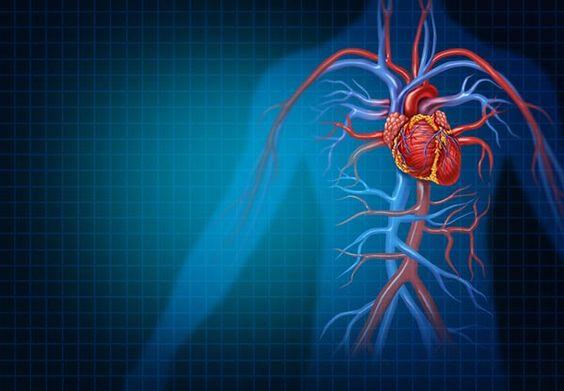 nyomás hipertónia és hipotenzió miből viagra és hipertónia kompatibilitás