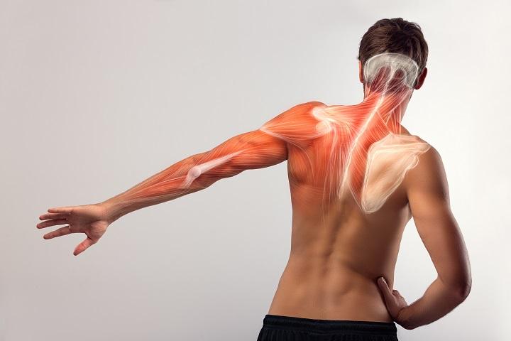 magas vérnyomás fájdalom a bal vállban magas vérnyomás érdekes tények