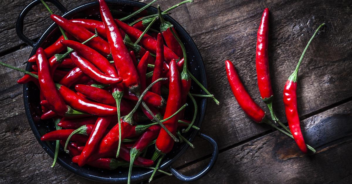 Csak vállalkozó kedvűeknek : vérnyomáscsökkentés chili paprikával! – Fitoterápiakalauz