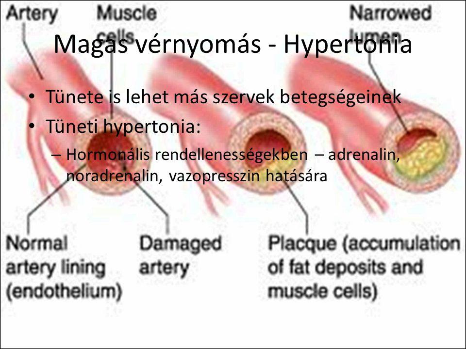 magas vérnyomás és adrenalin magas vérnyomás és méhvérzés