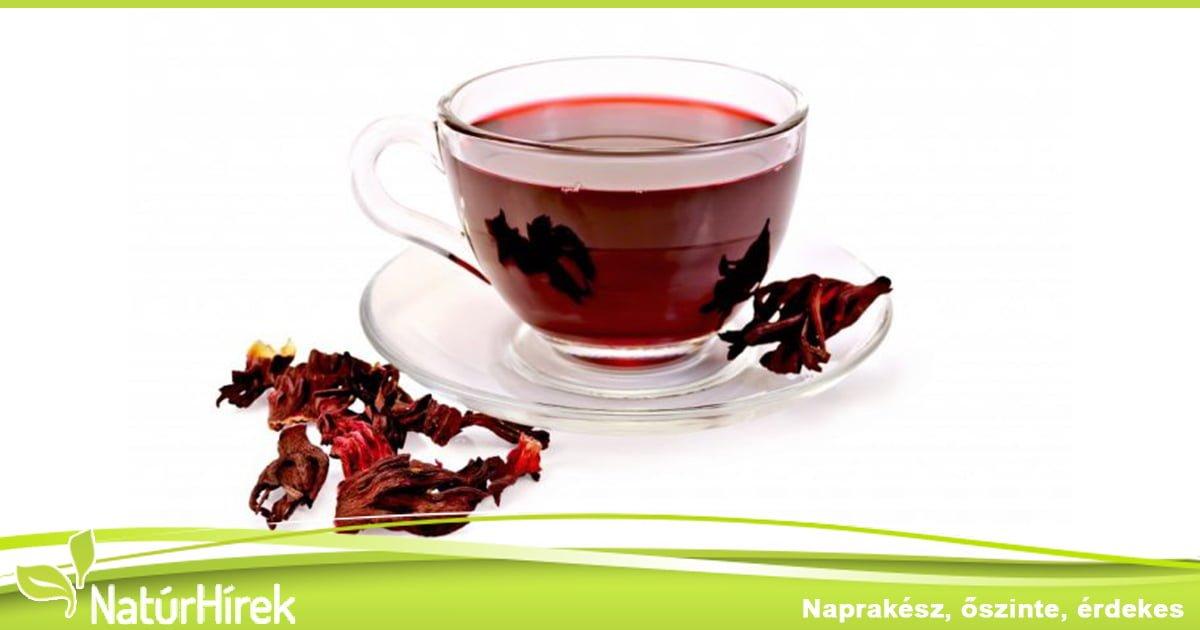Magas vérnyomás – hibiszkusz tea