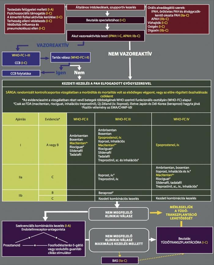 Okai, tünetei és a pulmonalis hipertónia kezelése - Dystonia November