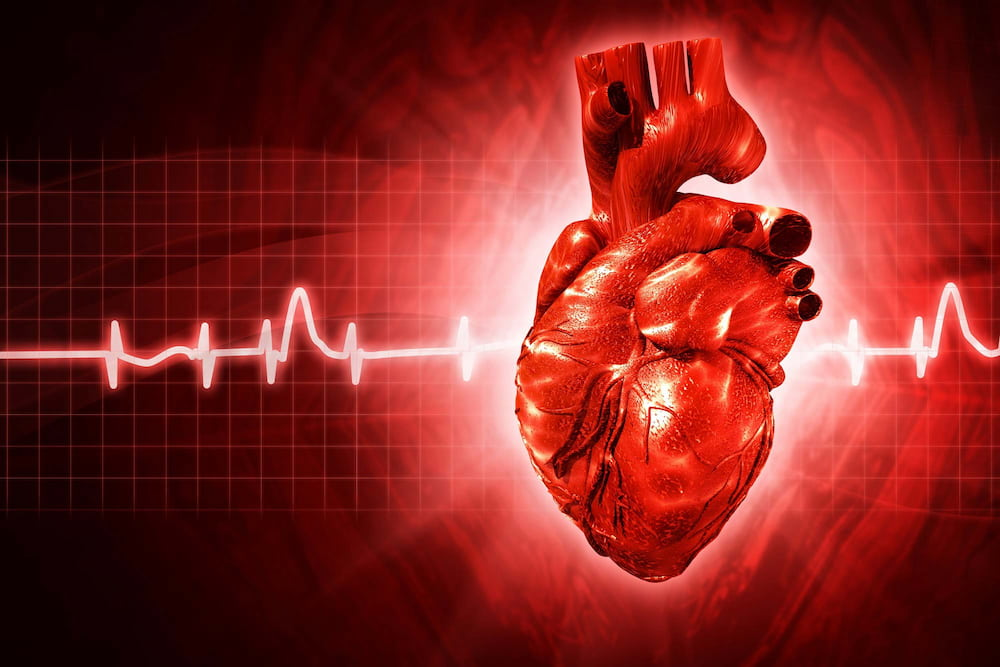 a véradás előnyös a magas vérnyomás esetén magas vérnyomás a kreatinból