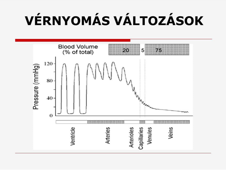 magas vérnyomás és alternatív kezelés feijoa magas vérnyomás ellen