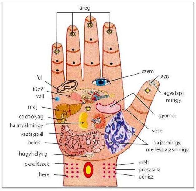 a hipertónia közvetett jelei